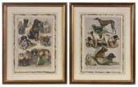 Lot 212: Six Sporting Prints