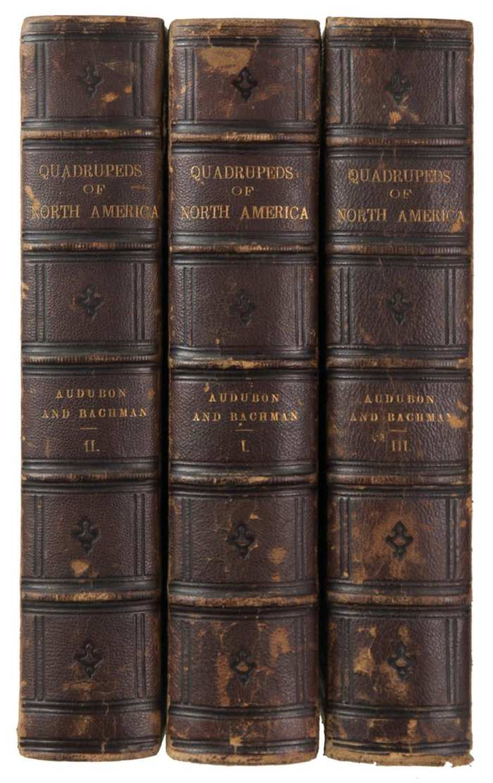 Lot 246: Three Volume Audobon Set
